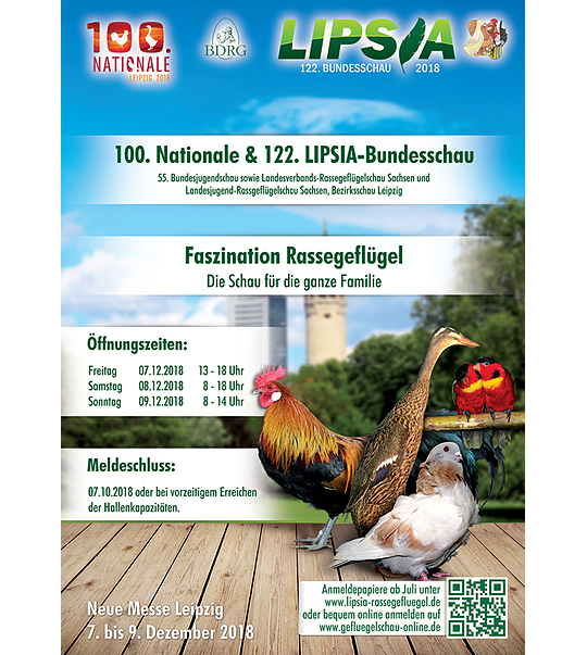 Trochę Polski w środku Niemiec LIPSK 2018